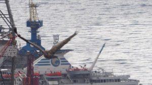 """Sup """"Birbiraj"""" u letu iznad riječkog brodogradilišta """"Viktor Lenac"""""""