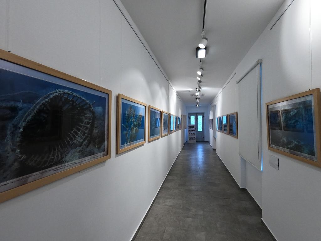 Otvorena je nova izložba Marinka Babića o Vranskom jezeru