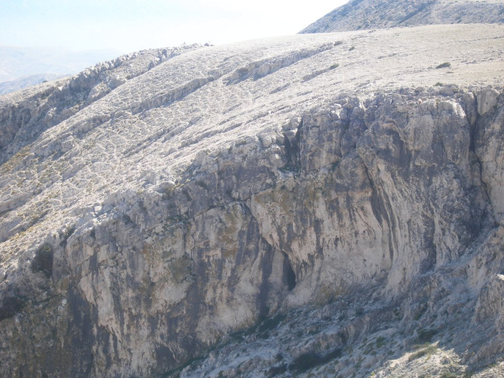 Odmorišta supova na zapadnoj visoravni iznad Bašćanske doline