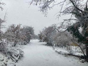 3 12 2020 snijeg TBA
